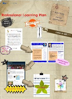 Mary's Professional Learning Plan