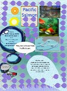 Pacific Salmon by Joey and Ian's thumbnail