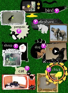 Animals for ESL Learner