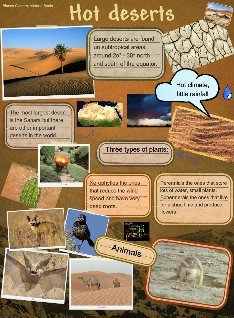 hot desert animals plants