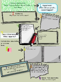 science investigation template