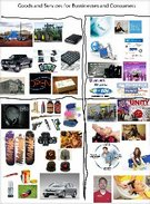 Goods and Services for Businesses and Consumers's thumbnail