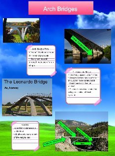 the leonardo bridge project